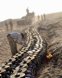 Roadside bomb in Iraq kills munitions' destroyer