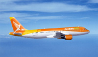 Adam Air jetliner debris found in the sea off Sulawesi