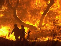 4 firefighters killed in California wildfire started by arsonist