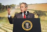 Bush again talks about converting switchgrass and wood chips into ethanol