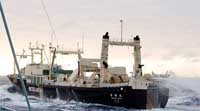 Environment fears raised after Japanese whaling ship catches fire in Antarctic waters