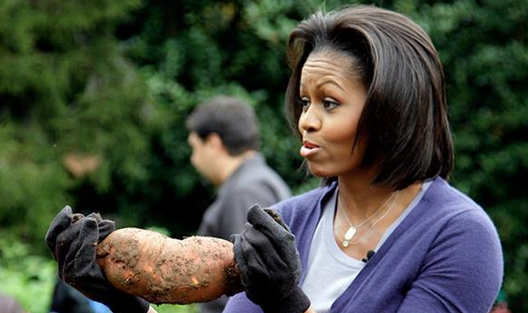 Univision TV star fired for comparing Michelle Obama to Planet of the Apes character. 54744.png