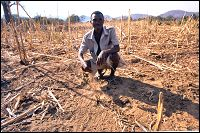African village chiefs make donation to Katrina victims