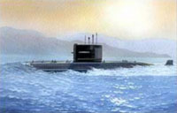 Russian nuclear submarines test-fires intercontinental missile