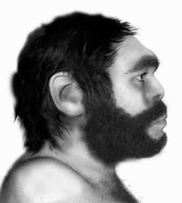 Researchers may reproduce Neanderthal DNA