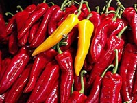 Hot chilli peppers kill prostate cancer cells