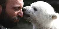 Berlin Zoo receives fax posing death threat to polar bear cub Knut