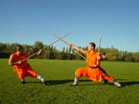 Shaolin monks insulted by Japanese ninjas