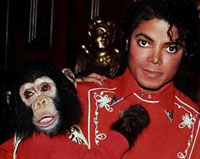 Michael Jackson's Bubbles Probably Became World's Richest Chimp