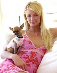 Paris Hilton sells her four-bedroom home in Hollywood Hills