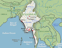 Bird flu in Myanmar more 'serious' than initially thought