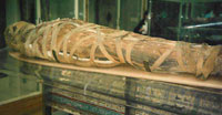 Ancient Egyptians Mummies had Heart Disease
