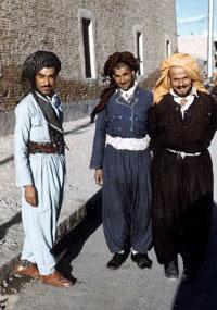 Iranian police arrest seven Kurds