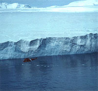 World's biggest ice sheet stable and not yet posing threat to ocean levels