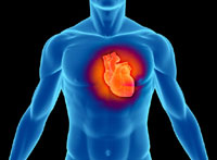 New Treatment for Heart Damage Found