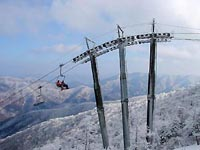 Pyeongchang to bid for Winter Olympics again
