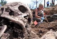 U.N. open major Srebrenica trial