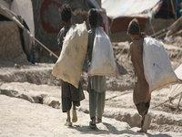 Haiti: Too Many Cooks…