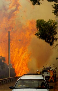 Wildfires destroy homes, wreak havoc in southern Australia