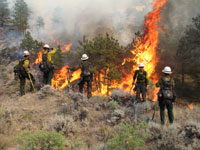 6 Firefighters Die in Spain Forest Fires