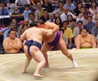 Sumo wrestler dies after practice