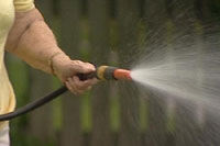 66-year old man bashed to death watering his lawn