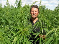 Farmers not allowed growing industrial hemp