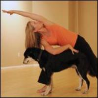 Doggie yoga to join humans and their pets