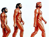 Real Evolution Vs. Evolutionary Myth