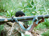 Fourteen Tamil Tiger rebels killed in fighting in Sri Lanka