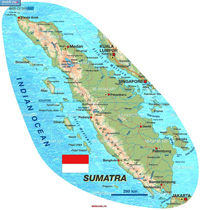 Indonesia Struck by 7.7-Magnitude Quake