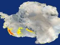 Rate of warming in Antarctica is twice as imagined, says study. 48954.jpeg
