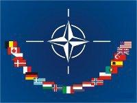 NATO hawkishly welcomes Georgia with open arms. 47968.jpeg