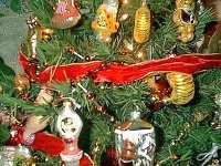 Christmas tree on fire: house and Christmas ruined
