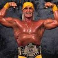 Celebrity Wrestler Hulk Hogan Getting Divorced