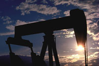 Oil prices grow dramatically