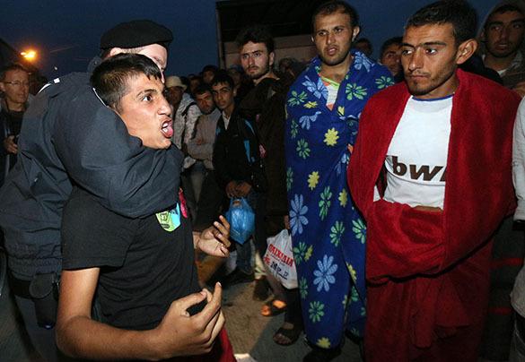 Image result for migrants rapist