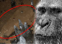 Russian scientists use Google maps to find yeti