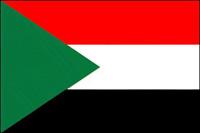 Sudan: U.N. troops are best force to restore peace, rebel representative says