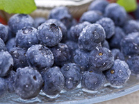 Blueberry is a Perfect Treat for Memory