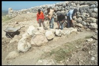 Roman-era tomb discovered in Greek