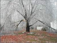 New ice storm moves across central southern USA