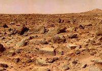 Any life on Mars came from Earth