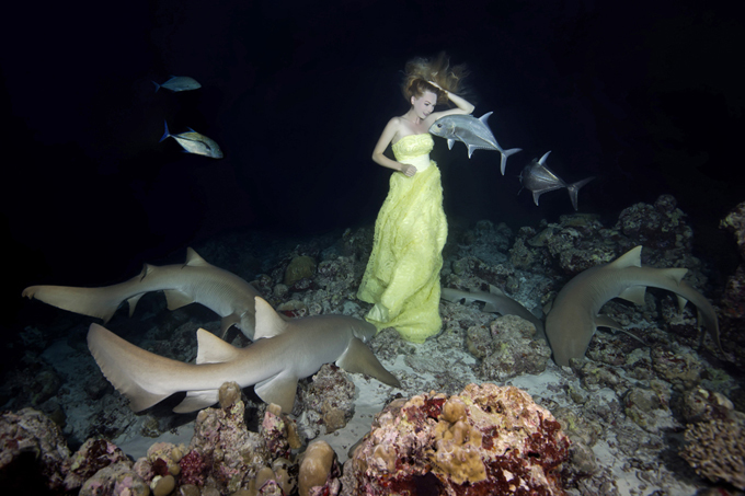 Woman in yellow dancing with sharks A young woman from Moscow, Irina Britanova, was posing underwater with Tawny nurse sharks during a night shoot in Indian Ocean, Maldives. The model was holding her breath for one minute to let the photographer near her take the pictures. The photographer had additional oxygen tanks for the model to breathe between photo shoots. sharks