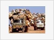Mass Migration, the Modern Version of Invasion