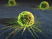 Scientists around the globe work hard on creation of anti-AIDS and anti-cancer vaccines