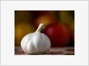 Two cloves of garlic a day keep doctors far, far away
