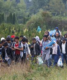 Amnesty International wants more refugees for Europe