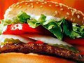 McDonald s food likely to be banned in Russia