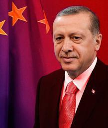 EU wants Turkey's Erdogan to be the next 'Yanukovych'